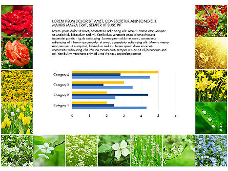 Data Driven Slides with Flowers, Slide 6, 03305, Data Driven Diagrams and Charts — PoweredTemplate.com