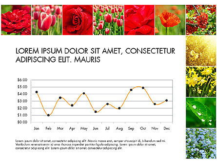 Data Driven Slides with Flowers, Slide 8, 03305, Data Driven Diagrams and Charts — PoweredTemplate.com