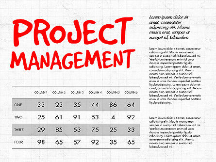 Project Management Presentation Concept, Slide 5, 03350, Business Models — PoweredTemplate.com