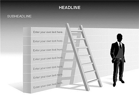 Business Models: Ladder on Wall #03421