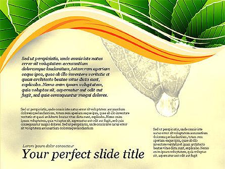 Illustrative Presentation Deck, Slide 11, 03489, Presentation Templates — PoweredTemplate.com