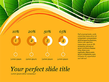 Illustrative Presentation Deck, Slide 13, 03489, Presentation Templates — PoweredTemplate.com