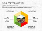 Pie Charts: Donut Presentation Concept #03696