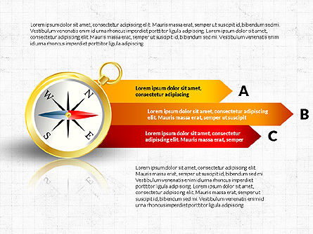 Infographics: Wind Rose Infographics #03706