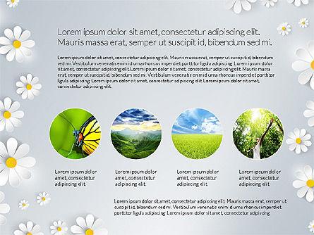 Presentation Templates: Naturschutzbericht #03711
