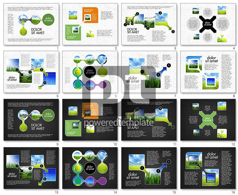 Ecology Process Presentation Concept