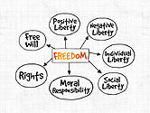 Business Models: Freedom Organizational Chart #03894