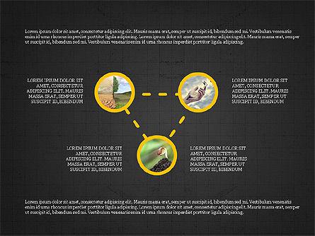 Shapes and Photos Presentation Deck, Slide 10, 03973, Shapes — PoweredTemplate.com