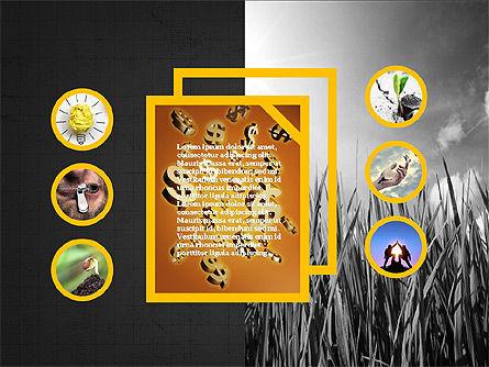 Shapes and Photos Presentation Deck, Slide 11, 03973, Shapes — PoweredTemplate.com