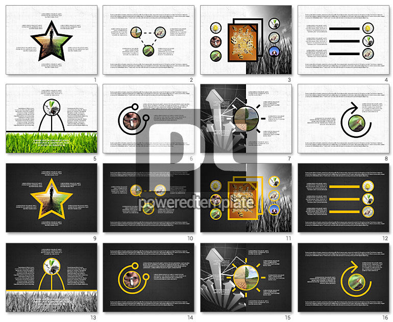 Shapes and Photos Presentation Deck