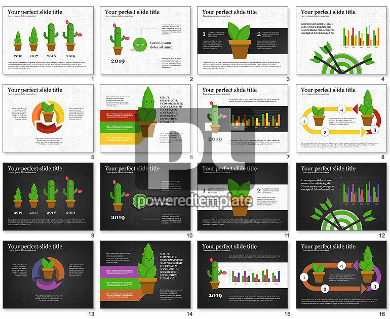 Growing Plant Presentation Concept