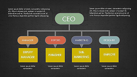 CEO Organization Chart Slide 10