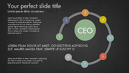 CEO Organization Chart Slide 15