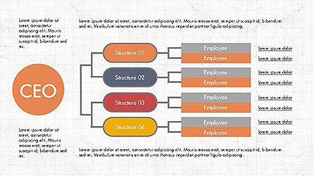 CEO Organization Chart Slide 3
