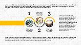 Statistical Report Presentation Template#7