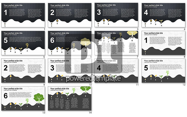 Growing a Tree from Seed Presentation Template