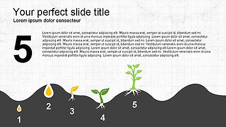 Growing a Tree from Seed Presentation Template, Slide 12, 04131, Presentation Templates — PoweredTemplate.com
