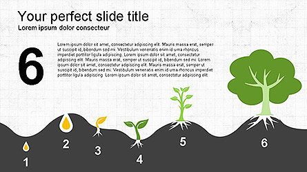 Growing a Tree from Seed Presentation Template, Slide 13, 04131, Presentation Templates — PoweredTemplate.com