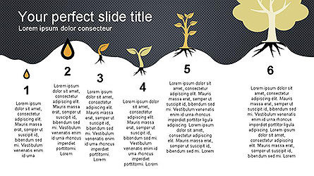 Growing a Tree from Seed Presentation Template, Slide 7, 04131, Presentation Templates — PoweredTemplate.com