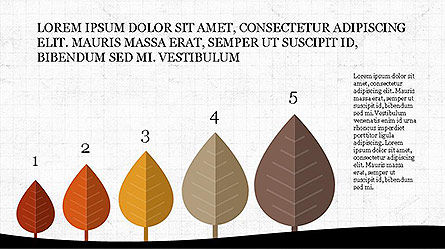 Presentation Templates: Growth of Tree Stages Diagram Concept #04156
