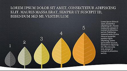 Growth of Tree Stages Diagram Concept, Slide 9, 04156, Presentation Templates — PoweredTemplate.com
