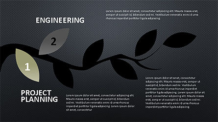 Tree Branch Stage Diagram, Slide 9, 04193, Stage Diagrams — PoweredTemplate.com