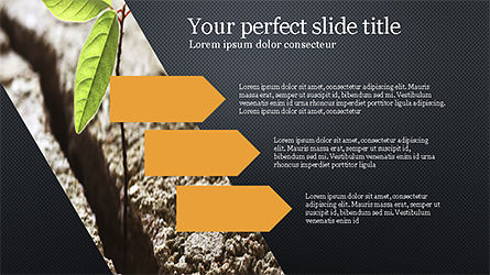 Fresh Ideas Presentation Brochure, Slide 15, 04218, Presentation Templates — PoweredTemplate.com