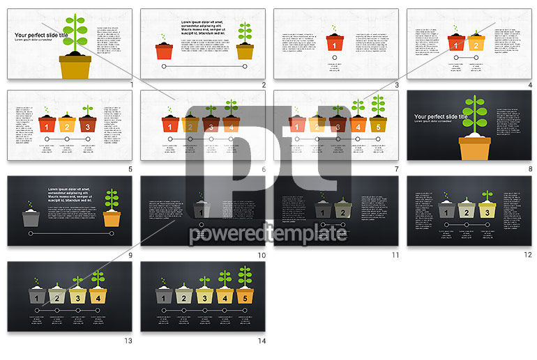 Plant Grow Presentation Template