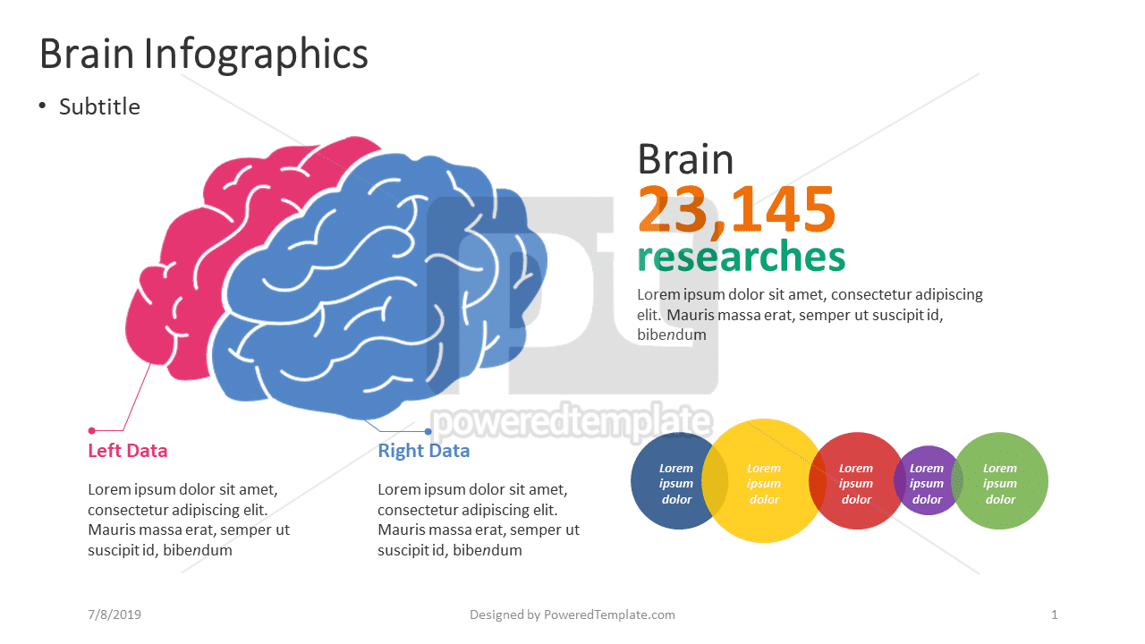 Brain Infographics, 04358, Infographics — PoweredTemplate.com