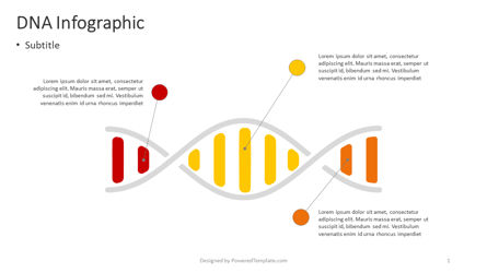 Infographics: Dna-infografik #04383