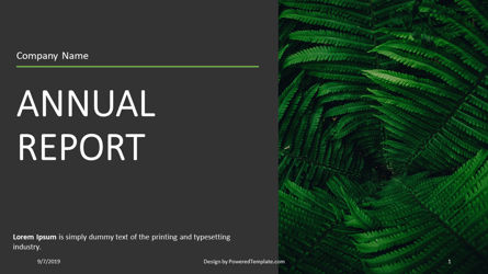 Presentation Templates: Nonprofit Organization Annual Report #04416