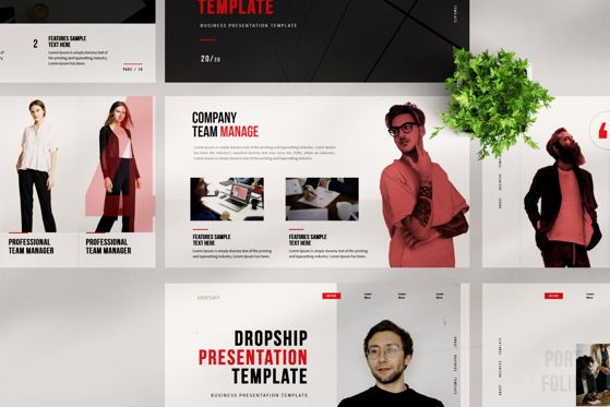 Presentation Templates: Dropship - PowerPoint Template #04553