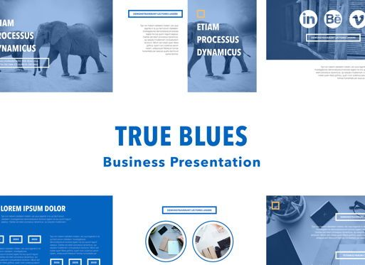 Business Models: True Blues Powerpoint Presentation Template #04822