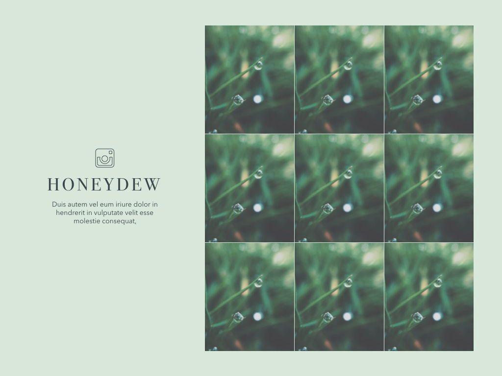 Honeydew Powerpoint Presentation Template, Slide 5, 04902, Business Models — PoweredTemplate.com