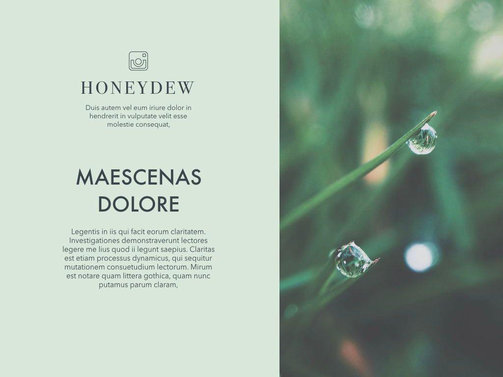 Honeydew Powerpoint Presentation Template, Slide 6, 04902, Business Models — PoweredTemplate.com