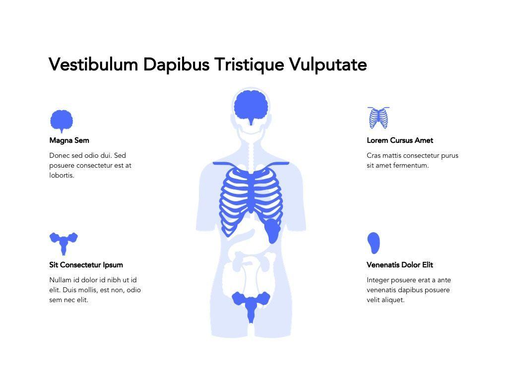 Medical Showcase Google Slides, Slide 16, 04958, Presentation Templates — PoweredTemplate.com