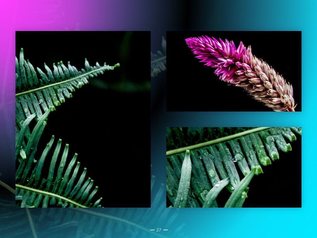 Vivid Google Slides Theme, Slide 28, 04967, Presentation Templates — PoweredTemplate.com