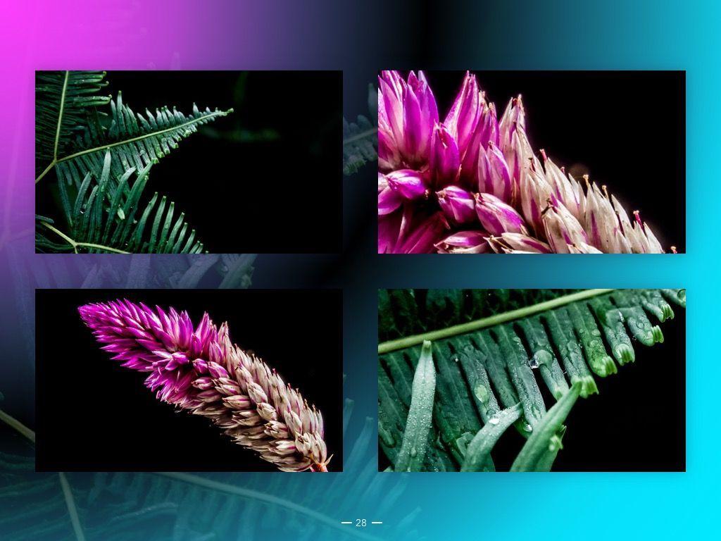 Vivid Google Slides Theme, Slide 29, 04967, Presentation Templates — PoweredTemplate.com