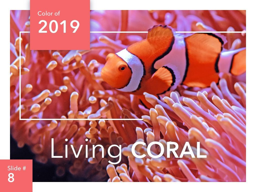 Living Coral PowerPoint Theme, Slide 9, 04969, Presentation Templates — PoweredTemplate.com