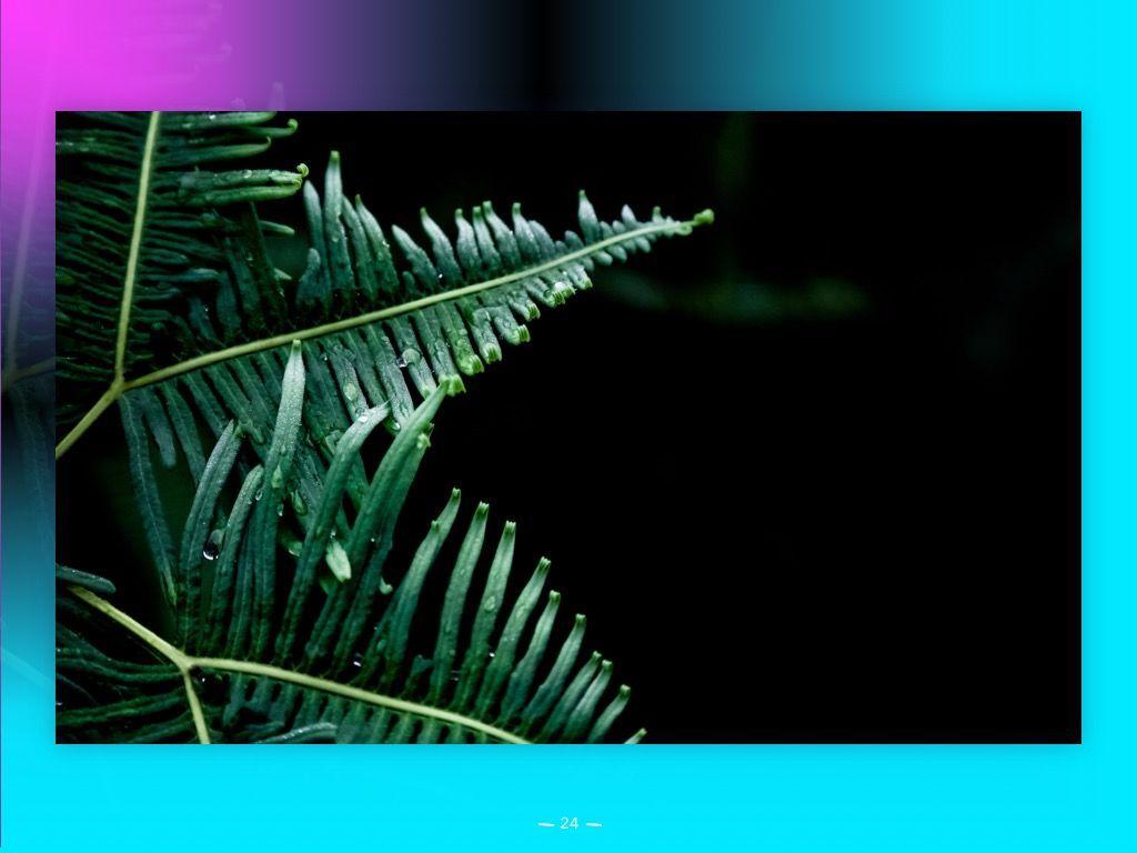 Vivid PowerPoint Theme, Slide 25, 04983, Presentation Templates — PoweredTemplate.com