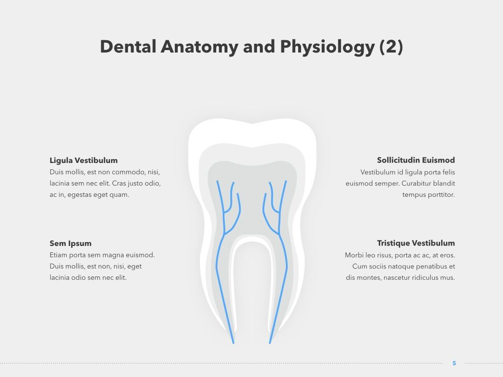 Dentistry Keynote Template, Slide 6, 04993, Medical Diagrams and Charts — PoweredTemplate.com