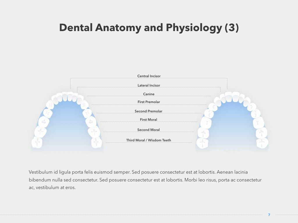 Dentistry Keynote Template, Slide 8, 04993, Medical Diagrams and Charts — PoweredTemplate.com