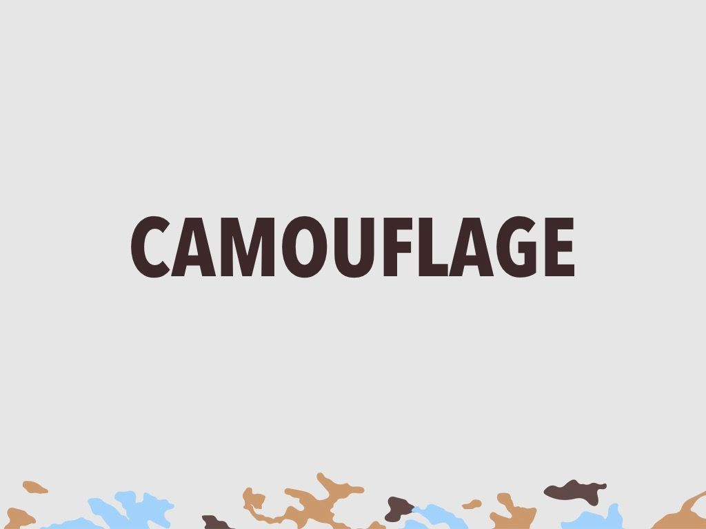 Camouflage PowerPoint Template, Slide 10, 05011, Presentation Templates — PoweredTemplate.com