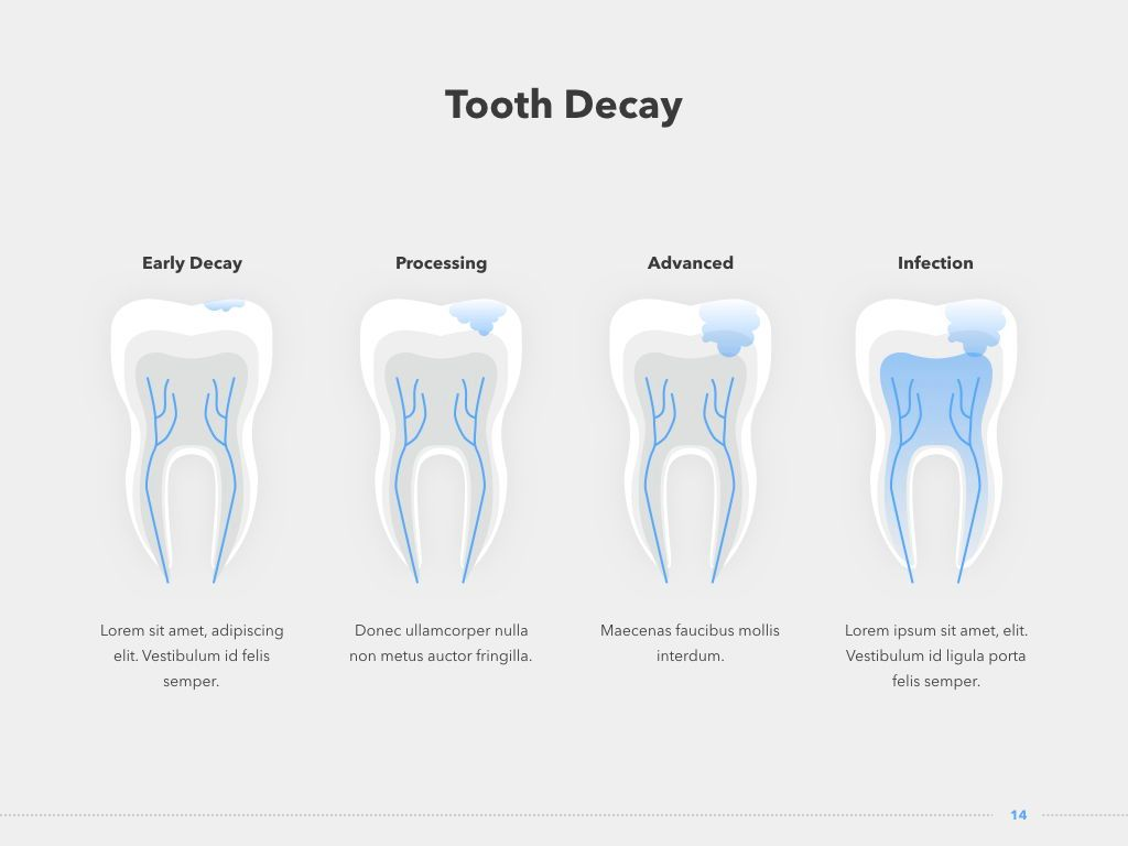 Dentistry PowerPoint Template, Slide 15, 05017, Medical Diagrams and Charts — PoweredTemplate.com
