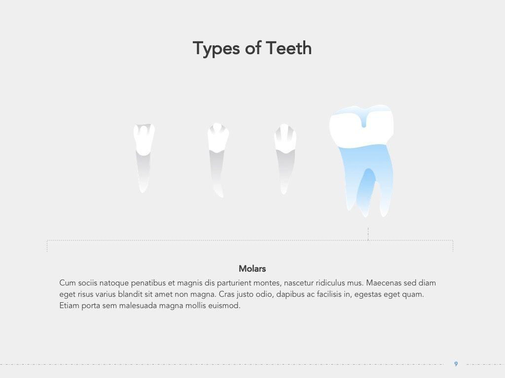 Dentistry Google Slides Template, Slide 10, 05034, Presentation Templates — PoweredTemplate.com