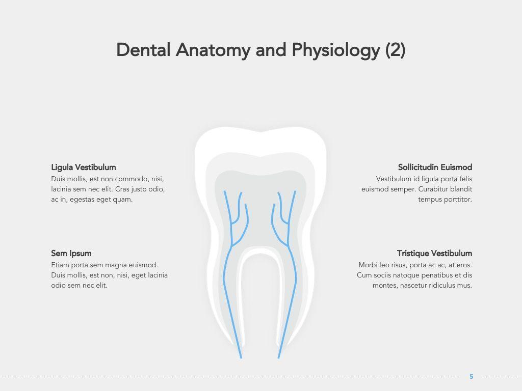 Dentistry Google Slides Template, Slide 6, 05034, Presentation Templates — PoweredTemplate.com