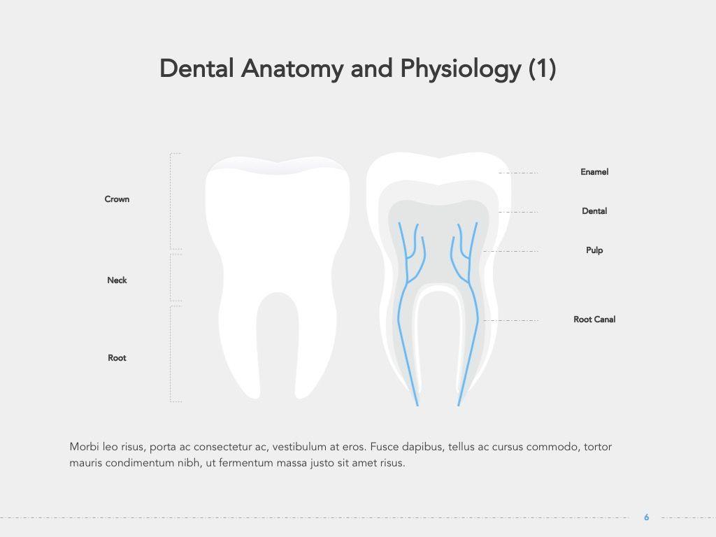 Dentistry Google Slides Template, Slide 7, 05034, Presentation Templates — PoweredTemplate.com