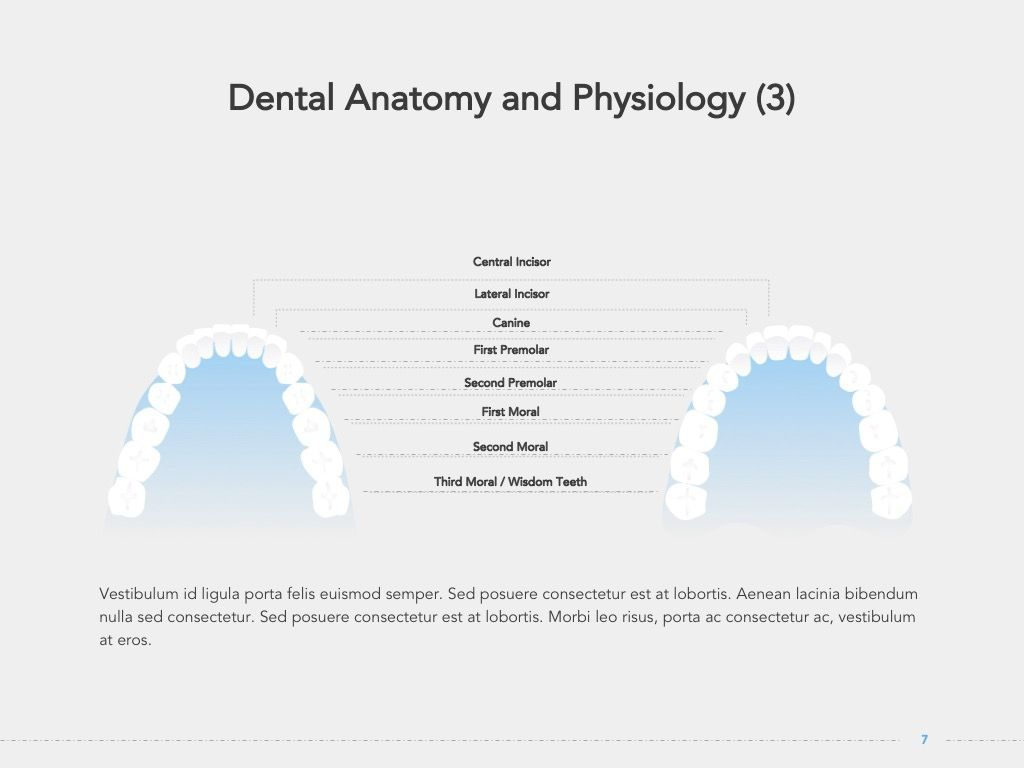 Dentistry Google Slides Template, Slide 8, 05034, Presentation Templates — PoweredTemplate.com