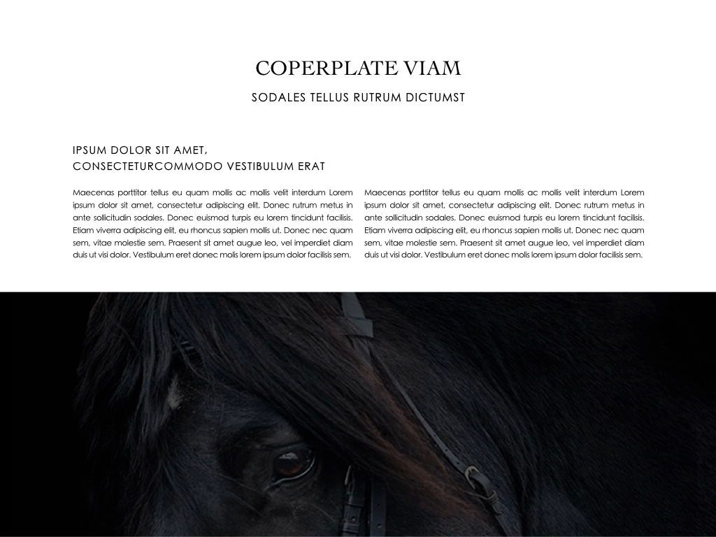 Equestrian Powerpoint Presentation Template, Slide 13, 05103, Presentation Templates — PoweredTemplate.com