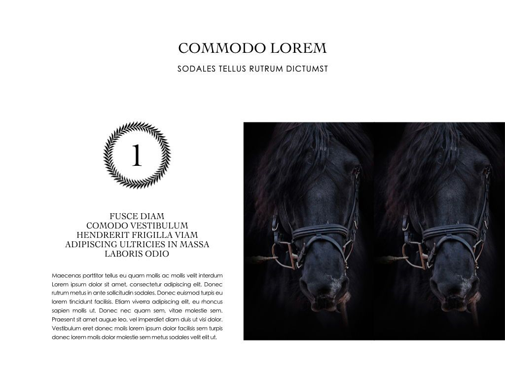 Equestrian Powerpoint Presentation Template, Slide 15, 05103, Presentation Templates — PoweredTemplate.com